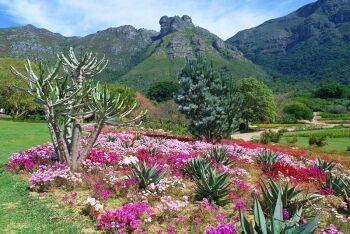 Kirstenbosch National Botanical Garden, Cape Town\'s Southern Suburbs, Western Cape